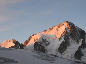 Chardonnet at Dawn