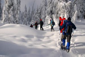Snowshoeing (photo from Google)
